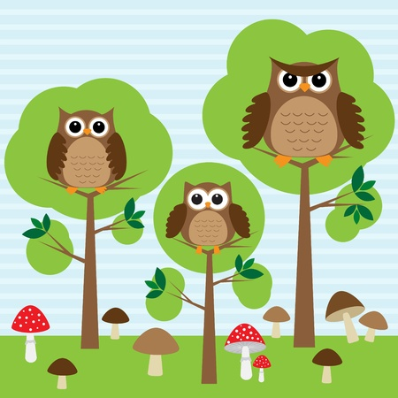 Cute family of owls in forest