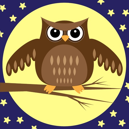 moon  owl  silhouette: Owl at Night.Illustration