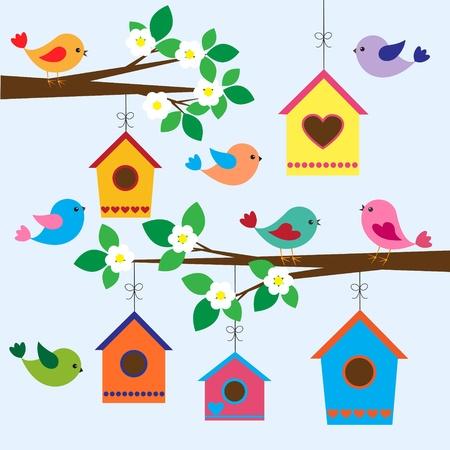 Pájaros coloridos y pajareras en primavera