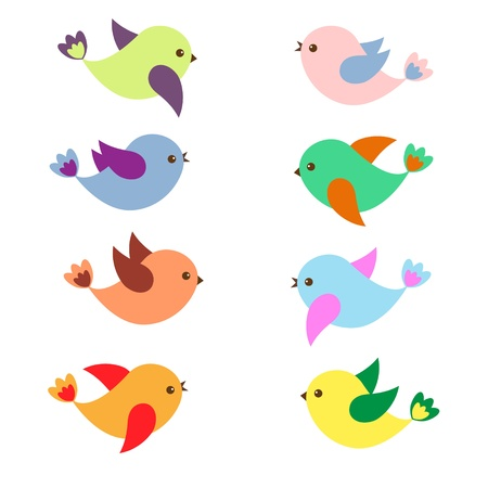 pajaro dibujo: Aves de colores de la primavera. Vector set