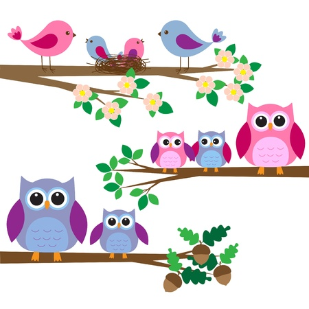 Owls and birds sitting on branches.