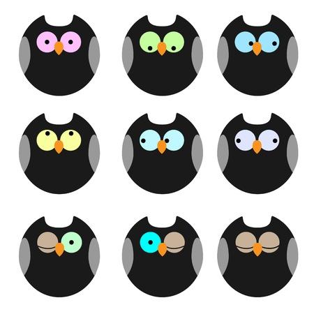 owlet: Varios de los b�hos