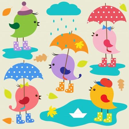 lluvia paraguas: Coloridos p�jaros lindos. Conjunto de vectores de oto�o