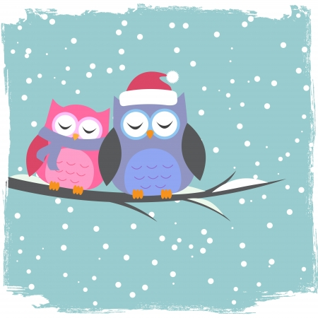 christmas owl:  Winter card with cute owls Illustration