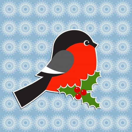 bullfinch: Bullfinch and Holly berry. Vector Christmas card