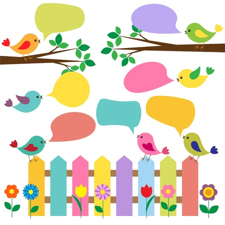 bird drawing: Colorful birds with bubbles for speech Illustration