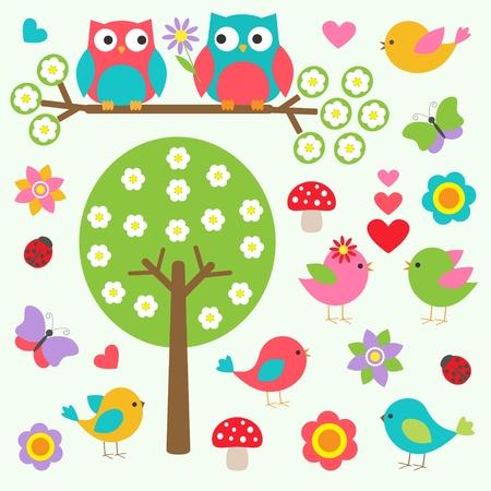 sowa: Ptaki i sowy w lesie wiosny. Wektor zestaw