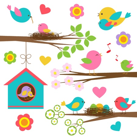 nido de pajaros: Familia de aves establecidas