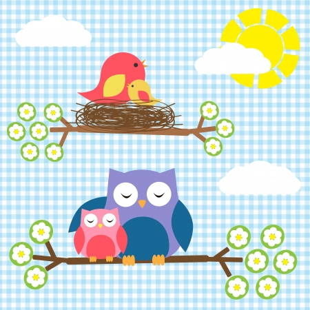 bird on branch: Two families - birds and owls