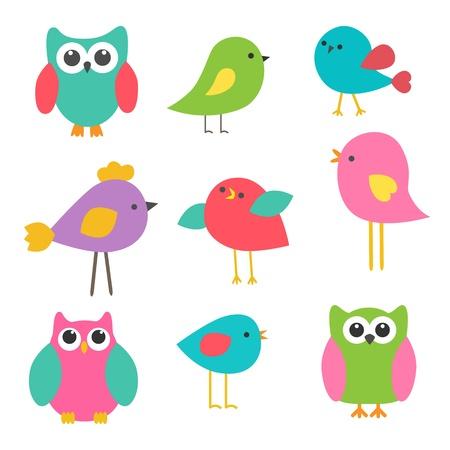 droll: Vector set cute birds and owls