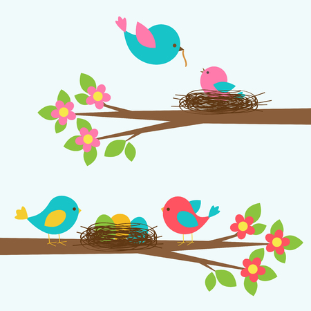Two cute families of birds on blooming branch tree. Vector set of children design elements Illustration
