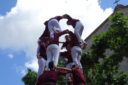 girdle: Castellers, May 7 2017 Cardedeu, human tower, Spain