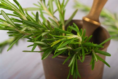 scrunch: Fresh rosemary in a mortar on the table Stock Photo