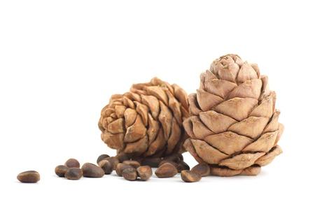 cedar: Cedar cones on a white background Stock Photo