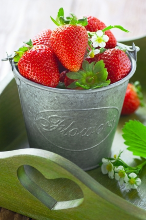 Strawberries in a bucket on a tray Stock Photo - 13888459