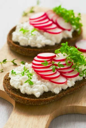 Radish sandwich with watercress salad photo