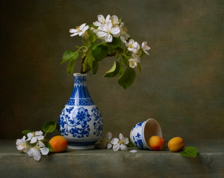 porcelain flower: Still life with flowers of apple and apricots  Stock Photo