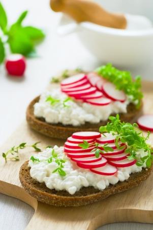 Radish sandwich with watercress salad photo