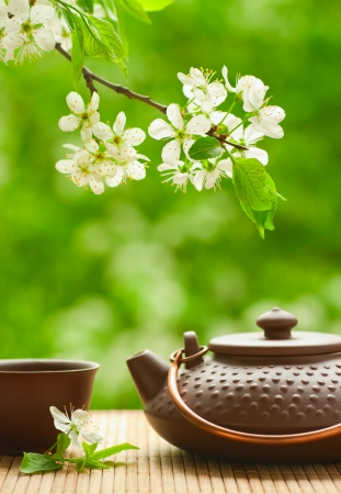 Ceramic teapot and flowering tree branch  photo
