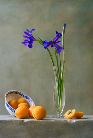 Still life with irises and apricots photo
