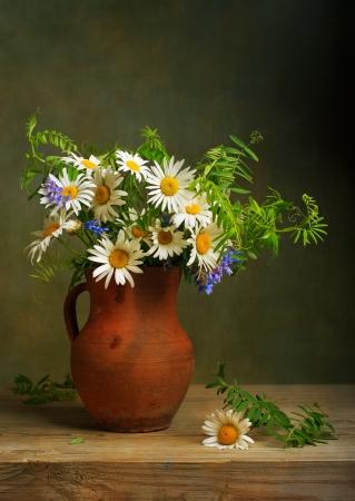 fiori di campo: Natura morta con un mazzo di margherite Archivio Fotografico