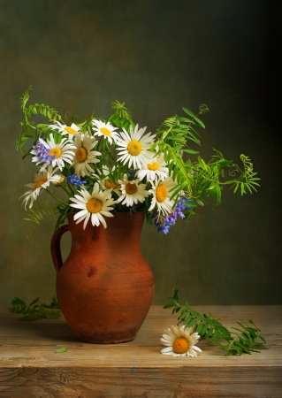 flor silvestre: Naturaleza muerta con un ramo de margaritas Foto de archivo