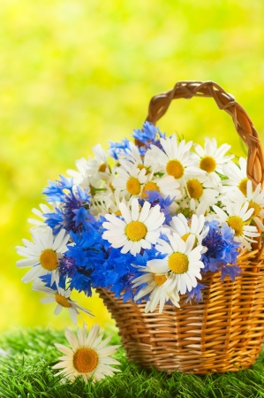 Bouquet of daisies and cornflowers in the basket photo