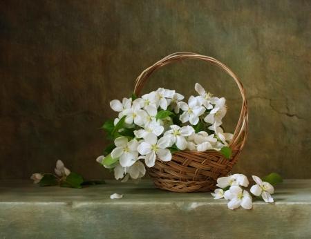 꽃 사과 바구니와 함께 빈티지 아직 인생 스톡 콘텐츠