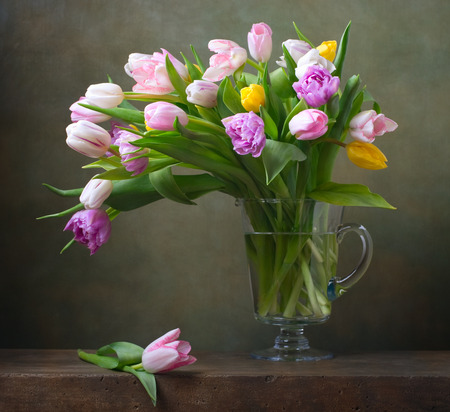 lilac flower: Still life with colorful tulips