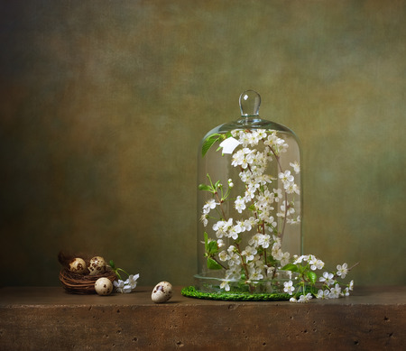 green flowers: Still life with cloche with flowering tree branches