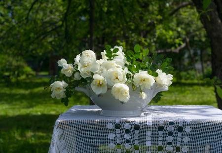 rosas blancas: Ramo de rosas blancas sobre una mesa en el jardín