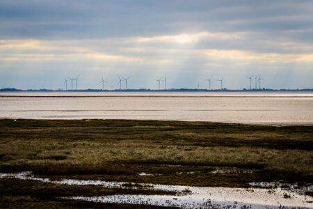 wind mills on the horizon