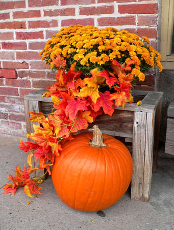 Pumpkin and Flowers