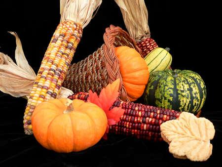 Thanksgiving Stock Photo - 264804