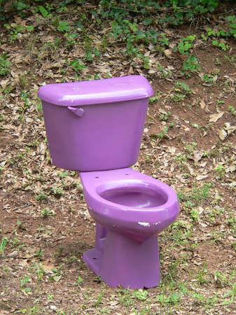 latrina: Toletta Viola