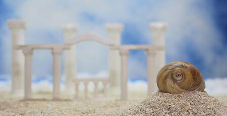 Seashell on Tropical Beach With Roman Style Ruins