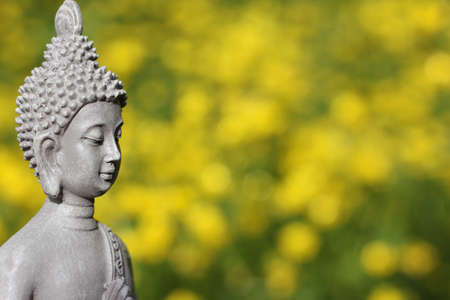 Buddha Statue With Field of Yellow Flowers in Background Shallow DOF