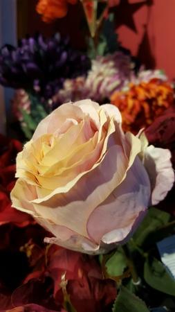 decor: White pink rose flower