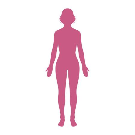 Female human body belonging to an adult woman Ilustracja