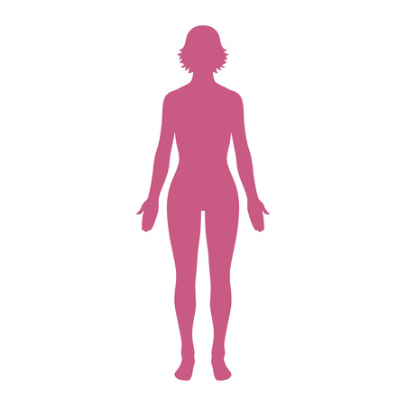 Female human body belonging to an adult woman Vettoriali