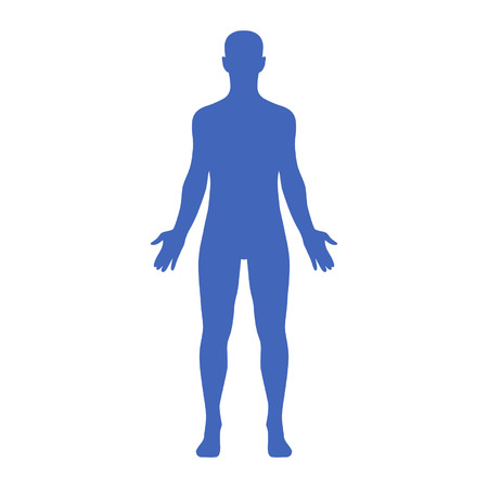 Male human body belonging to an adult man