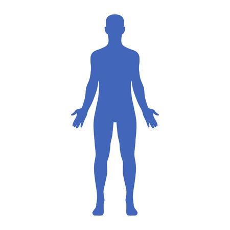 Hombre cuerpo humano perteneciente a un hombre adulto Foto de archivo - 39525050