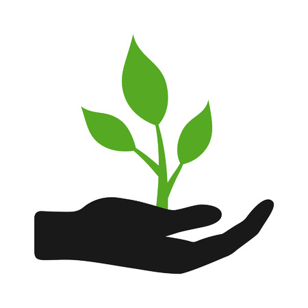 seedling: Hand holding plant flat icon for apps and websites