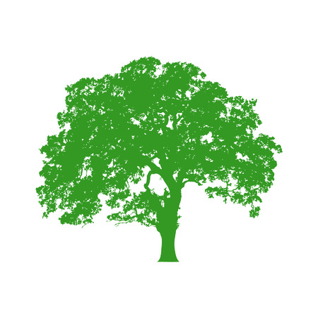 oaks: Beautiful vector tree silhouette icon for websites Illustration