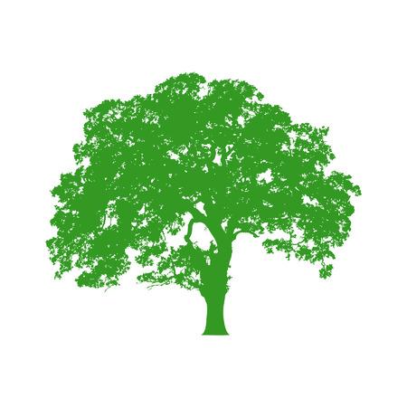 feuille arbre: Bel arbre vecteur icône silhouette pour les sites web