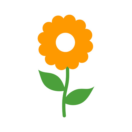yellow flower: Chamomile daisy flower flat icon for apps and websites