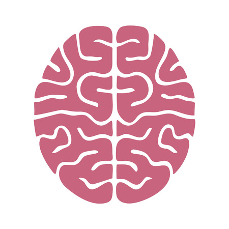 brain illustration: Human brain flat icon for app and website