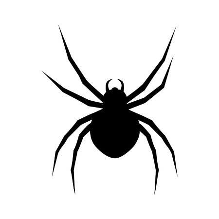 black widow: Black widow spider flat icon for apps and websites
