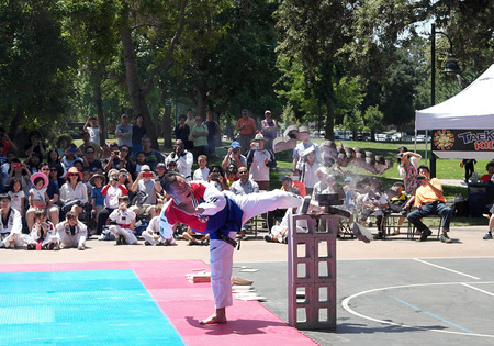 public demonstration: Grandmaster Tae Kwon Do  Taekwondo martial arts public demonstration at Rengstorff Park in Mountain View California in 2015 Editorial