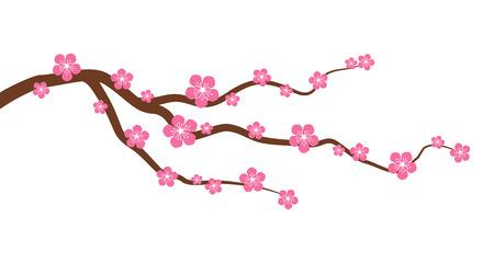 durazno: Melocotón o la flor de cerezo rama de un árbol con flores gráfico vectorial plana